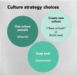 Cultural integration strategy